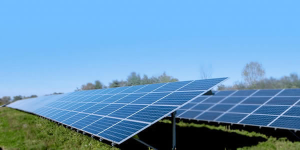dairy-farm-putting-solar-panels-on-your-property